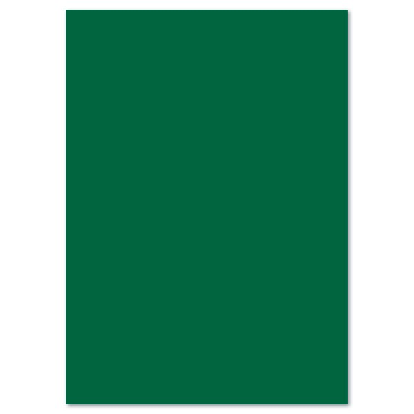 Tonkarton 220g/m² DIN A4 100 Bl. tannengrün Druckfehler im Kat 19/20 richtige Nummer 59961458
