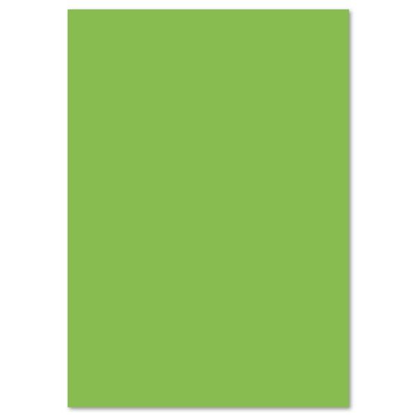 Tonpapier 130g/m² 50x70cm 10 Bl. hellgrün