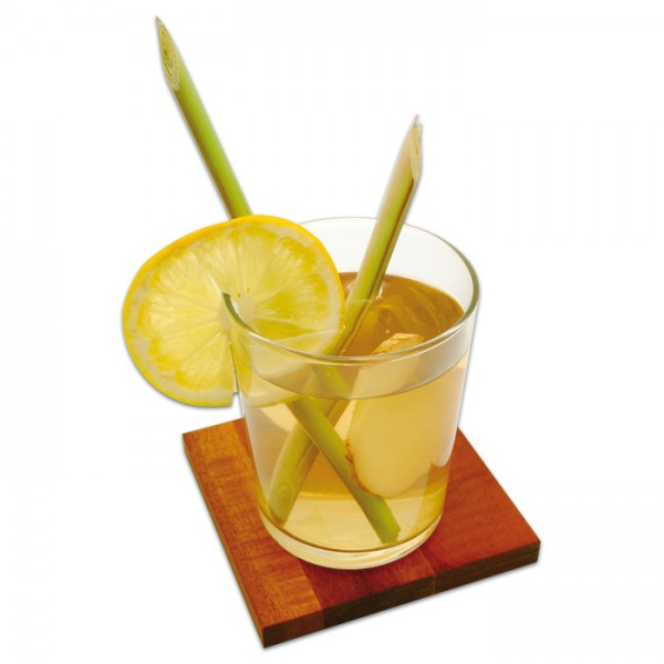 Kerzen-Duftöl 10ml Lemongras Anti-Mücken