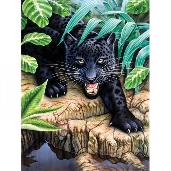 Malen nach Zahlen 22,2x29,8cm schwarzer Panther