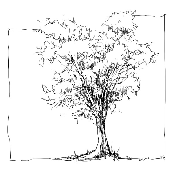 Color Sketch-Keilrahmen 20x20cm Baum