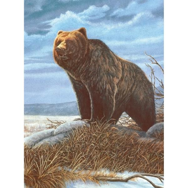 Malen nach Zahlen 22,2x29,8cm Grizzly