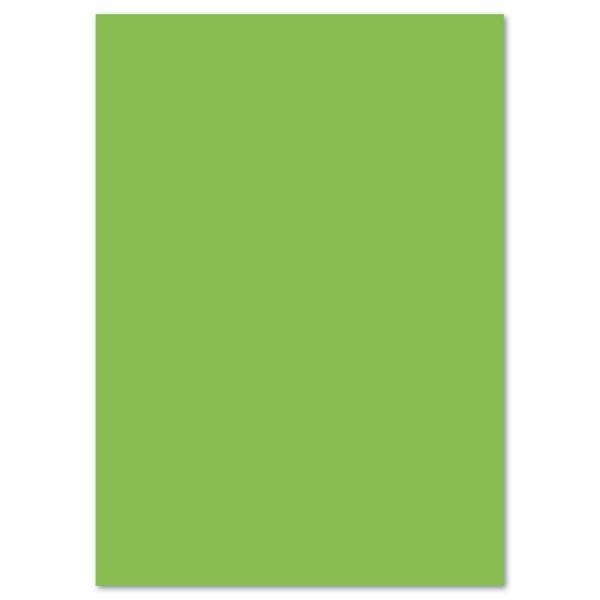 Fotokarton 300g/m² 50x70cm 10 Bl. hellgrün