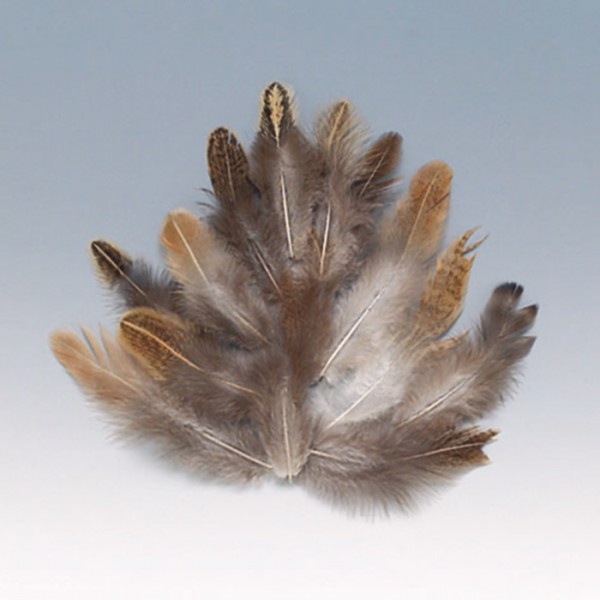 Federn 5-10cm 20 St. braun/weiß