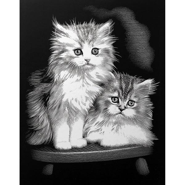 Kratzbild silber 20x25cm Kätzchen