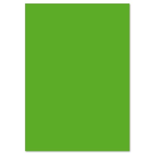 Tonpapier 130g/m² DIN A4 100 Bl. grasgrün