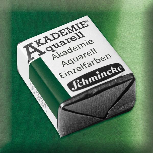 Akademie Aquarell 1,6ml permanentgrün ½ Näpfchen