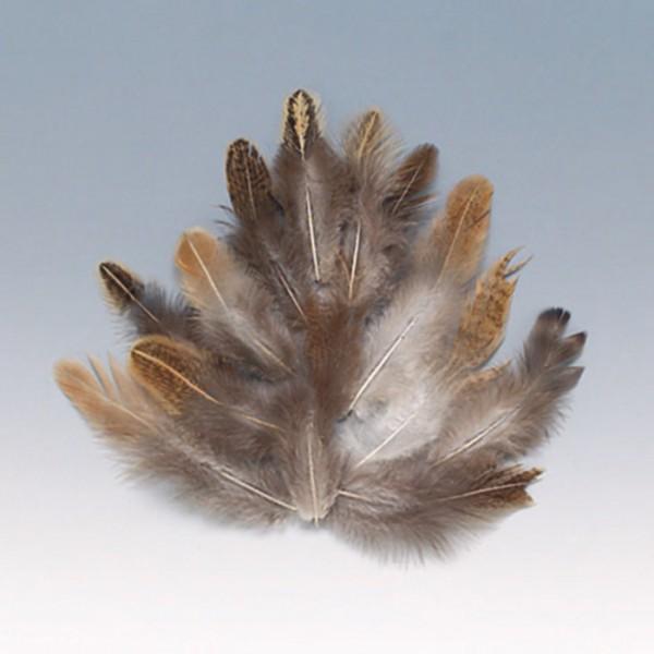 Federn 3-10cm 3g braun/weiß