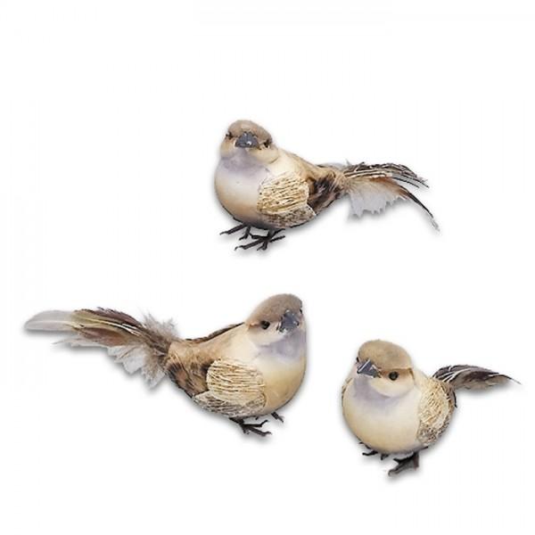 Vogel Buchfink ca. 11cm mit echten Federn