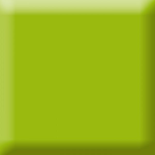 Fotokarton 300g/m² 50x70cm 10 Bl. maigrün