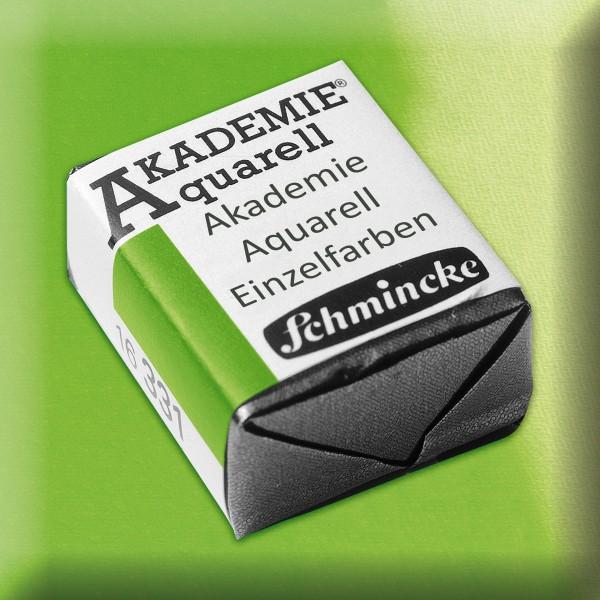 Akademie Aquarell 1,6ml maigrün ½ Näpfchen