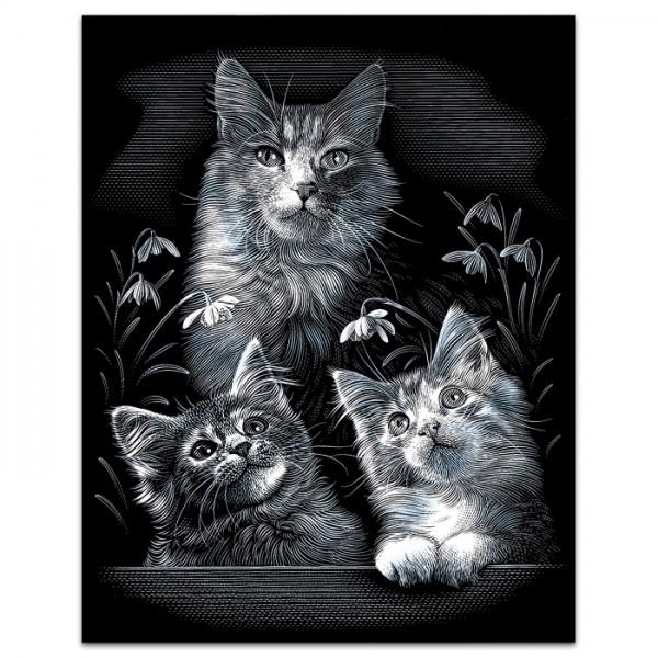 Kratzbild silber 25x20cm Süße Kätzchen