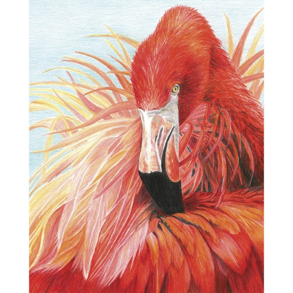 Malen nach Zahlen mit Buntstiften 22,2x29,8cm Flamingo Buntstift-Zeichnen leicht gemacht