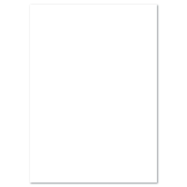 Tonkarton 220g/m² DIN A4 100 Bl. weiß