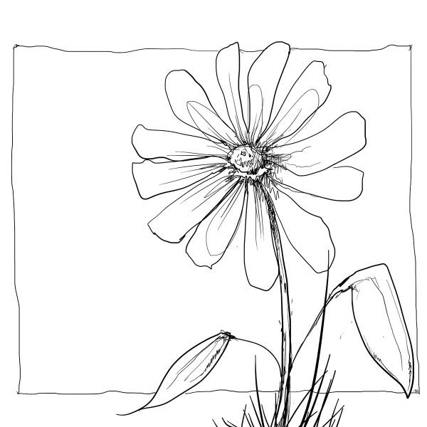 Color Sketch-Keilrahmen 20x20cm Blume 4