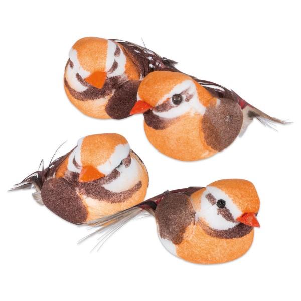 Kleine Vögelchen mit echten Federn ca. 4cm 4 St.