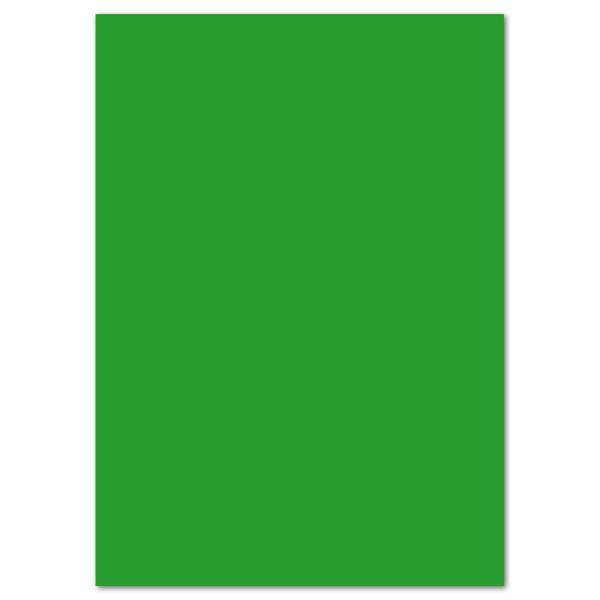 Fotokarton 300g/m² 50x70cm 10 Bl. grasgrün