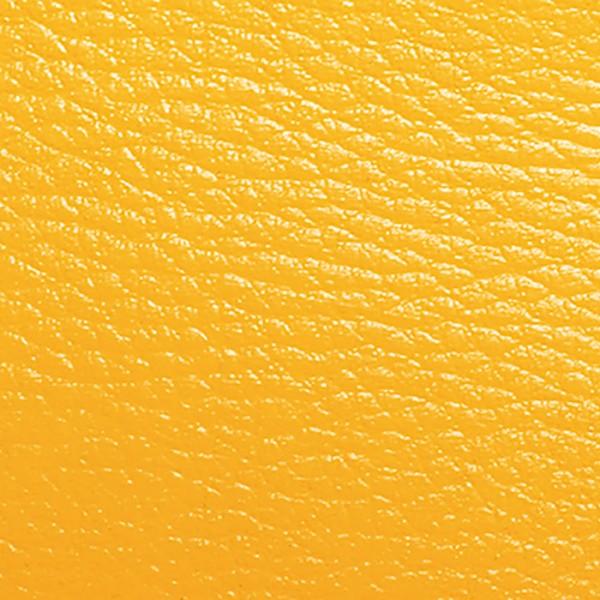 ColorUp Spezialfarbe für Leder 50ml gelb