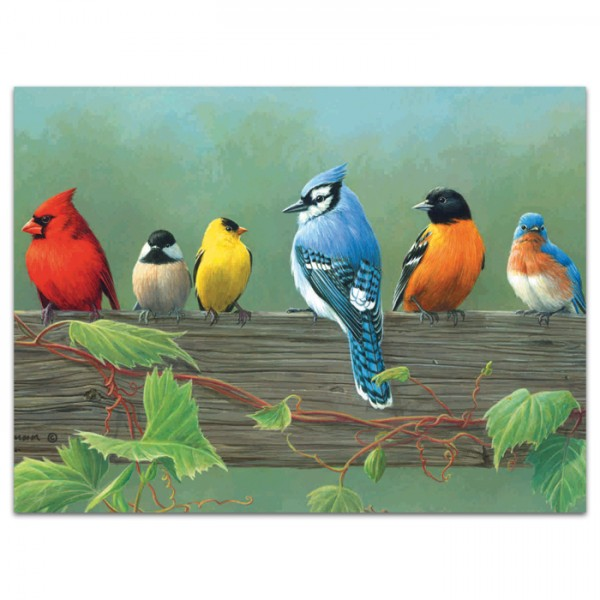 Malen nach Zahlen 40x30cm Vögel