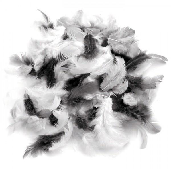 Deko-Federn 10g weiß/schwarz/grau Länge ca. 6-7cm