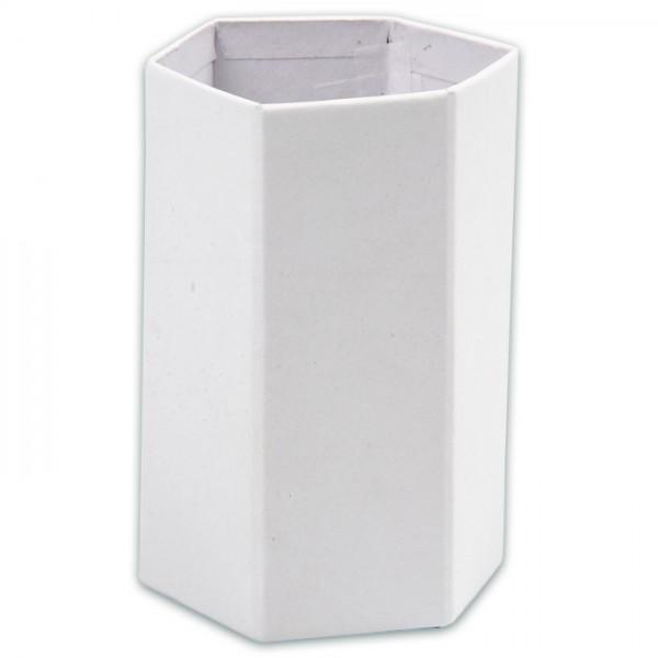 Stiftehalter sechseckig 6,5x5,5x9cm 10 St. weiß Karton