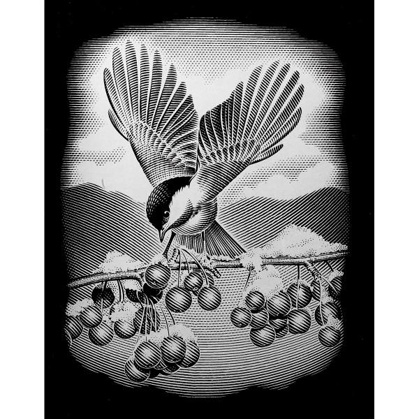 Kratzbild silber 20x25cm Vogel mit Beeren