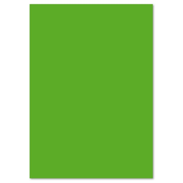 Tonpapier 130g/m² 50x70cm 10 Bl. grasgrün