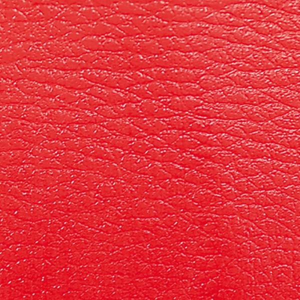 ColorUp Spezialfarbe für Leder 50ml rot
