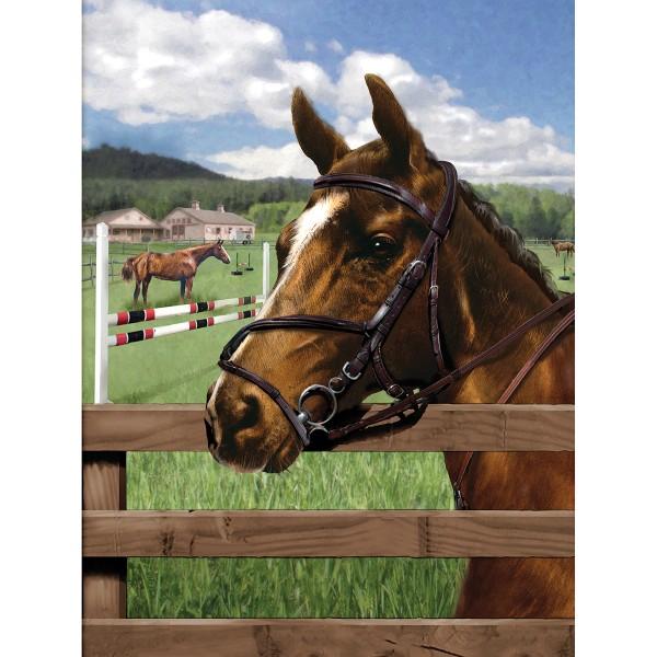 Malen nach Zahlen 22,2x29,8cm Pferdekoppel