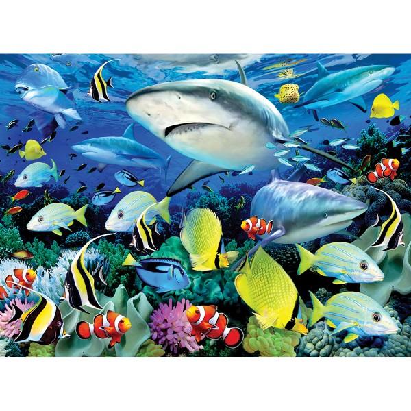 Malen nach Zahlen 28,6x39cm Riffhaie