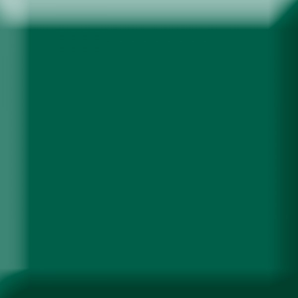 Fotokarton 300g/m² 50x70cm 10 Bl. tannengrün