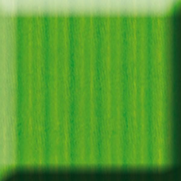 Bastelwellpappe 260g/m² 50x70cm 10 Bl. grasgrün