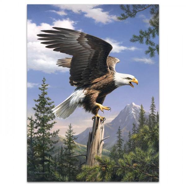 Malen nach Zahlen 22x30cm Adler