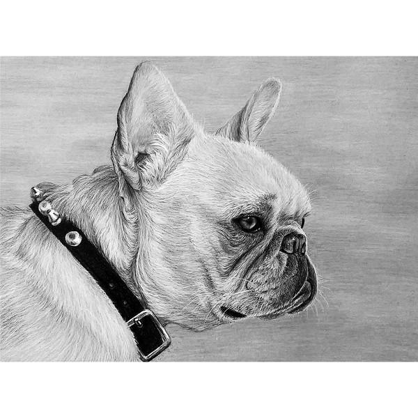 Sketching made easy 28,6x30cm Bulldogge Bleistiftzeichnen leicht gemacht