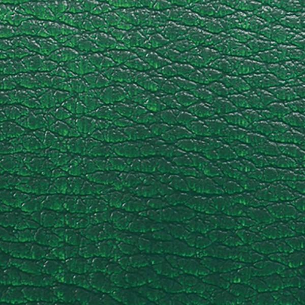 ColorUp Spezialfarbe für Leder 50ml grün