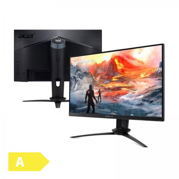 Acer XN253QP / 1920x1080 / 16:9 / 1 ms / 144 HZ / G-SYNC / Display Port / Lautsprecher