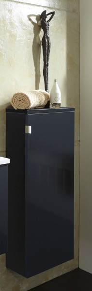 Marlin Gästebad 3010.5 Bad-Highboard 30 cm breit HBFT3F L/R