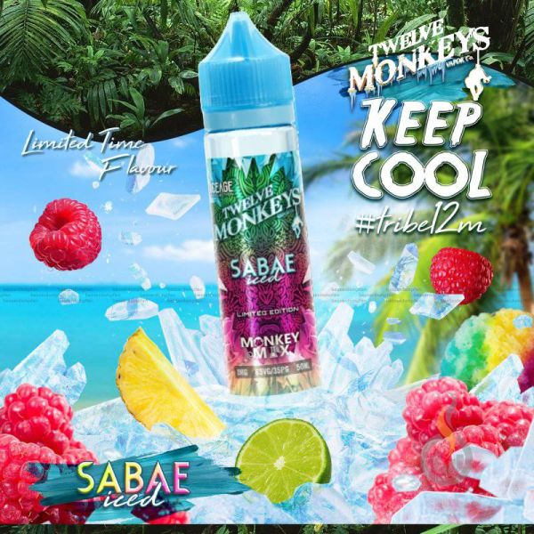 TWELVE MONKEYS ICEAGE Sabae Iced Liquid