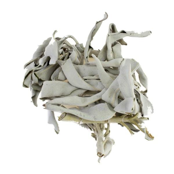 Weißer Salbei