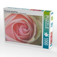 Eine rosarote Liebeserklärung (Puzzle): Rose