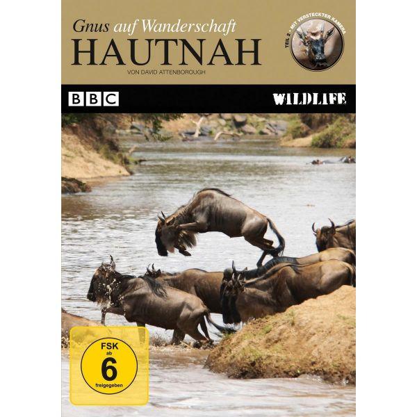 BBC Wildlife: Hautnah - Gnus auf Wanderschaft (Teil 2)