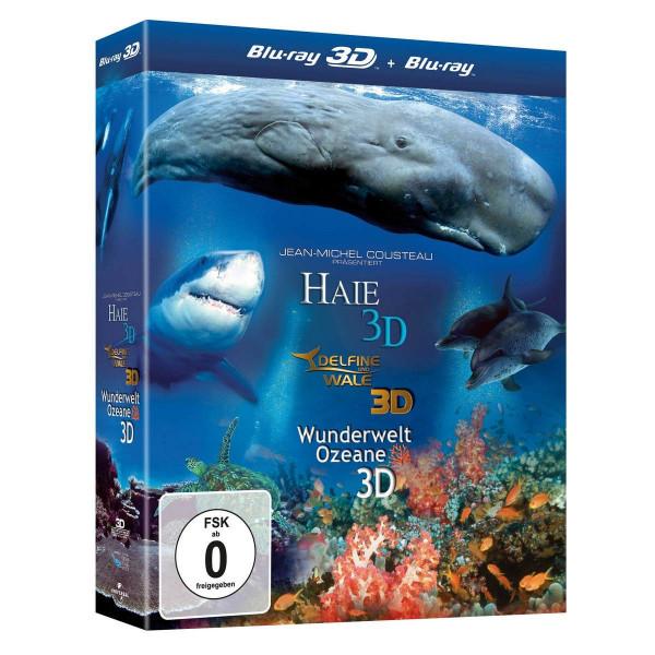 Haie 3D - Delfine und Wale 3D - Wunderwelt Ozeane 3D