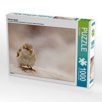 Kleiner Spatz (Puzzle): Sommervögel