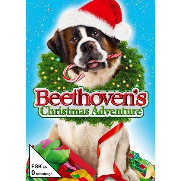 Beethovens 6