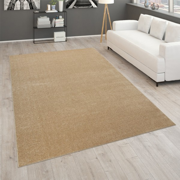 Rug Living Room Modern Monochrome Felt Backing